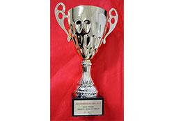 武汉市三环东段道路工程市政金杯奖杯