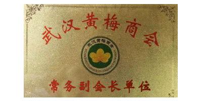 武汉黄梅商会 常务副会长单位