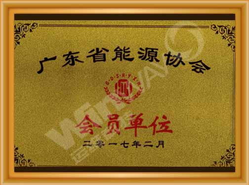 广东省能源协会.jpg