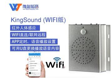 漏电语音提示装置