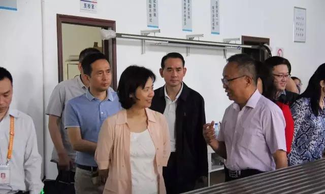 武汉市副市长徐洪兰参观我公司