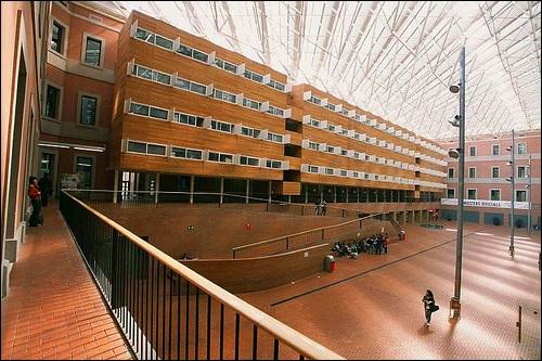 庞培法布拉大学