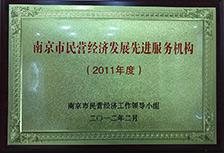 2011年度南京市民营经济发展先进服务机构