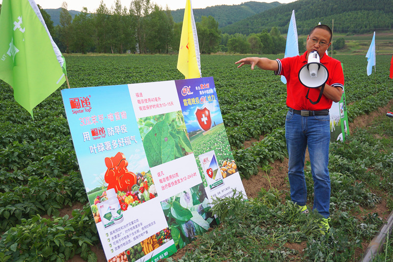 意大利世科姆药肥一体化——护薯宝现场观摩会