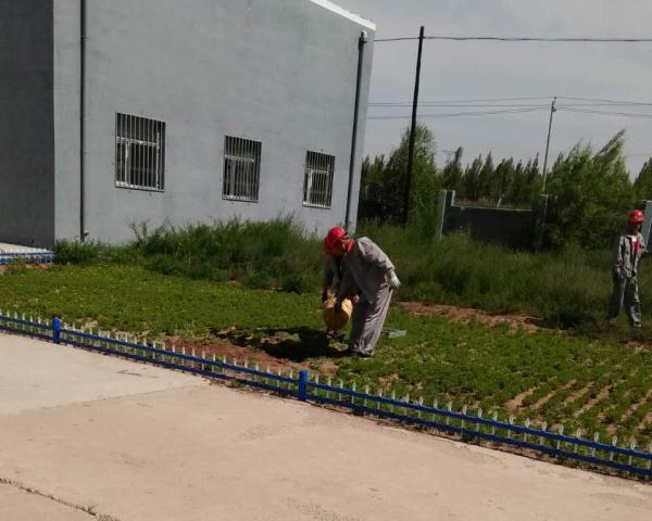 奥福污水处理厂环境改造