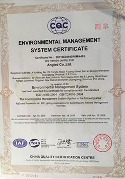 ISO14000 English Certificate