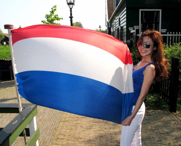 荷兰互惠生项目申请