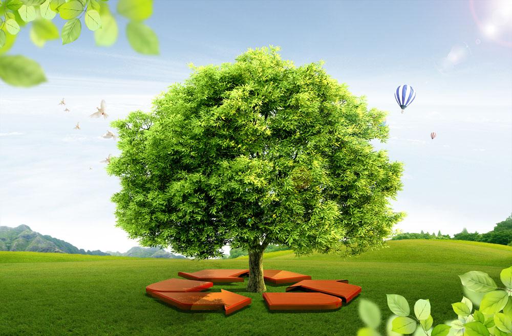 环境管理体系(ISO14001)
