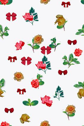 蝴蝶结雨露玫瑰花