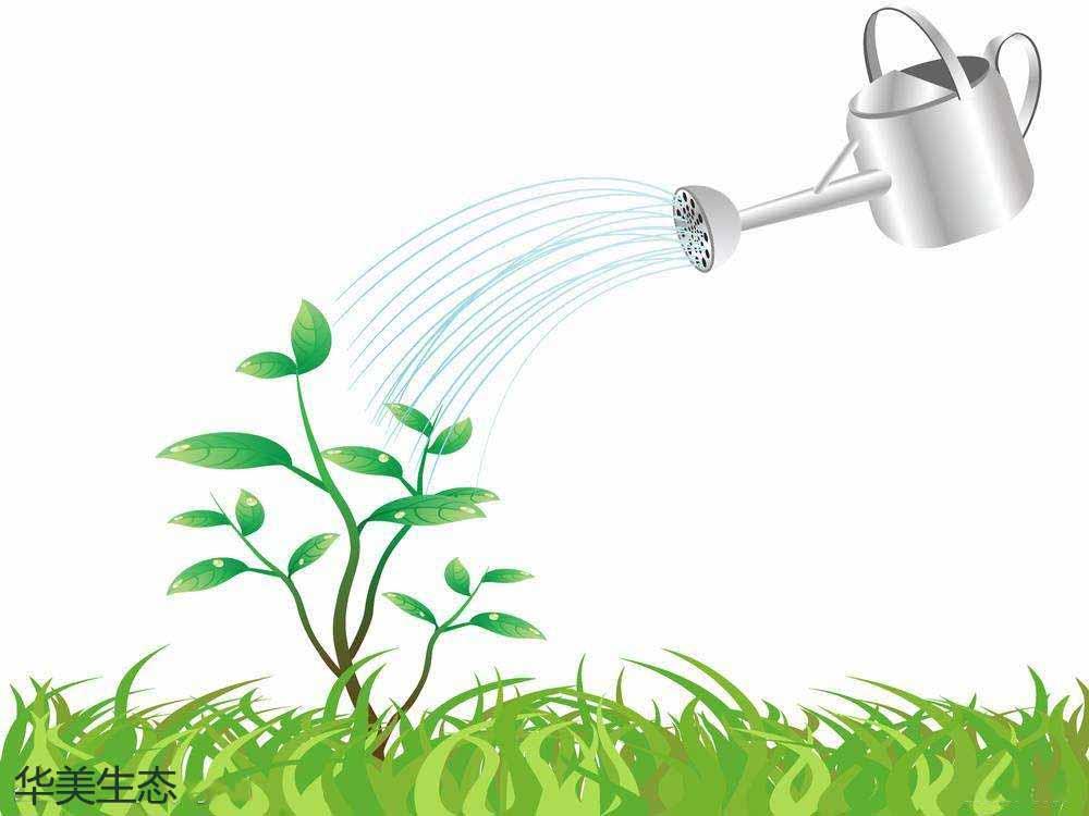 华美生态引进战略投资基金 完成股权定增
