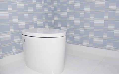 Practical and eco-friendly are still the mainstream bathroom market