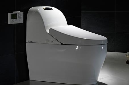 GIZO JJ-0810 modern ceramic smart toilet