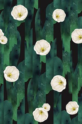 渲染绿叶洁白花朵