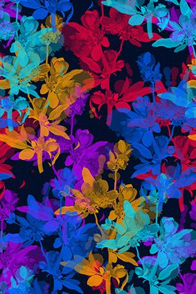 绚丽水彩娇媚花卉