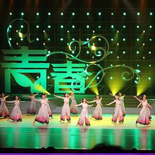 北京演艺专修学院学生大学生艺术节获奖