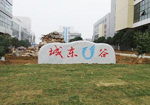宜昌将建肾beplay体育客服网页药物生产基地