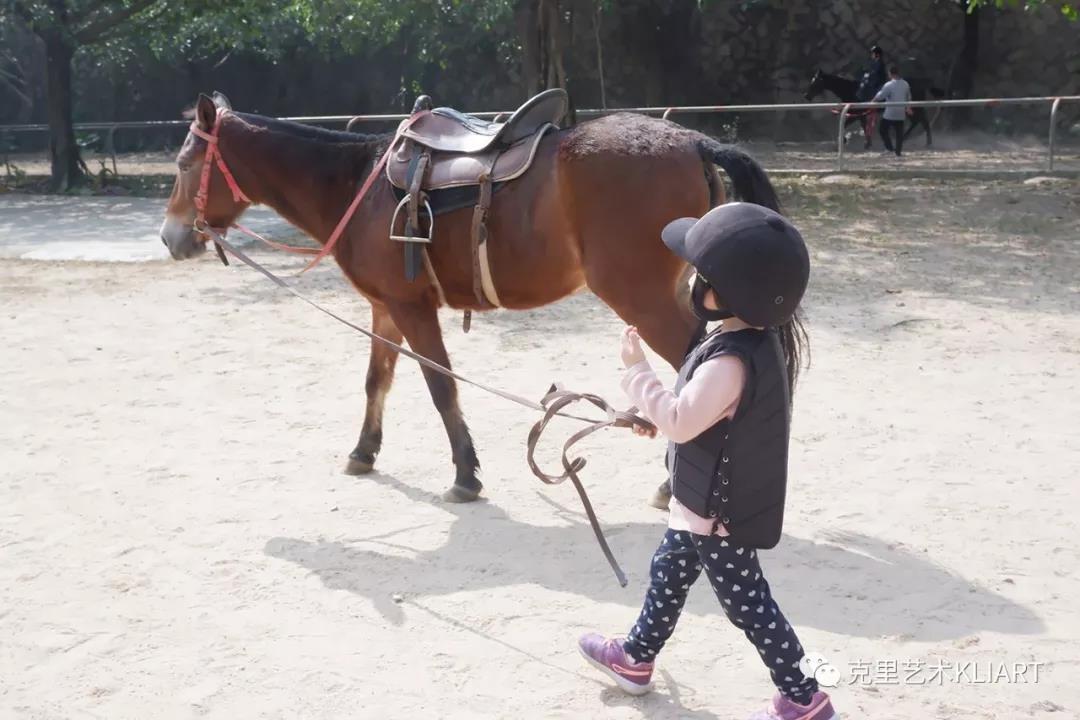 广州哪里可以让孩子骑马