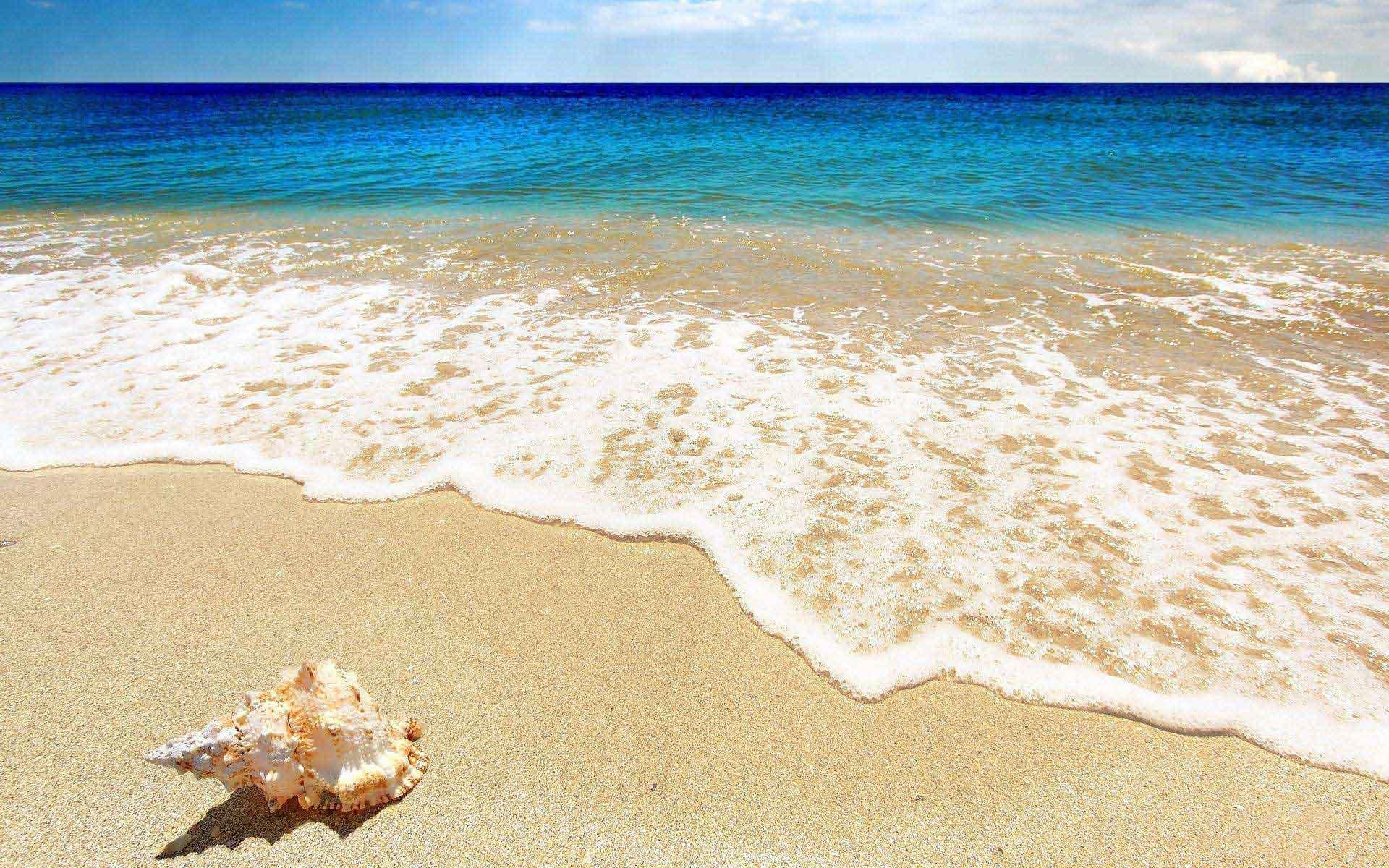 2019余下的360天,我在等一个人陪我去看海