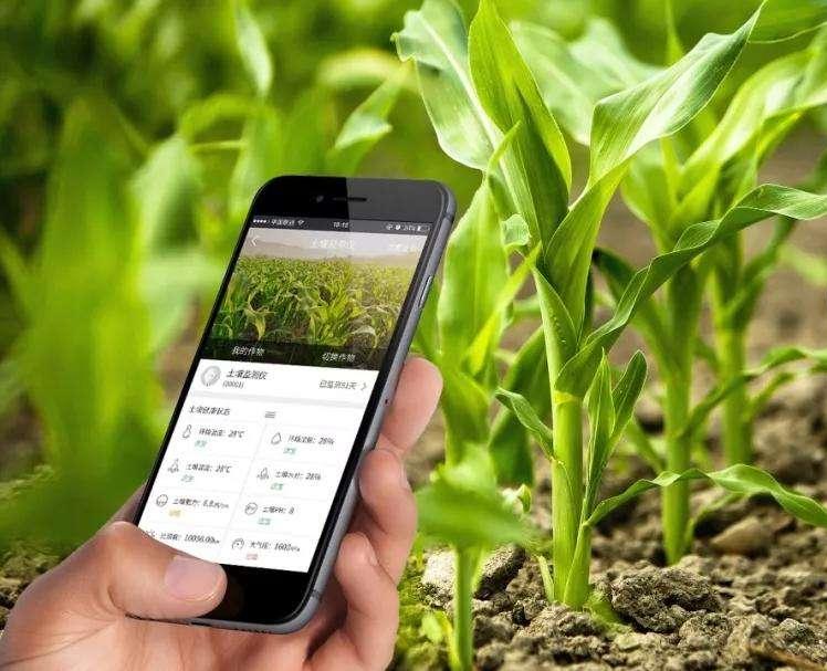 进军农业!华为与袁隆平合作,推进物联网智慧农业发展