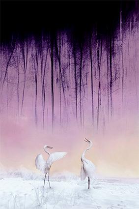 抽象斑斓树根亭立仙鹤