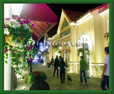 我司2018完成了位于东五环金盏乡的斯普瑞斯奥特莱斯的LED发光玫瑰和仿真植物景观装饰项目