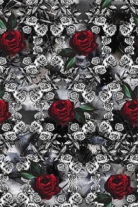 素描矢量玫瑰红花