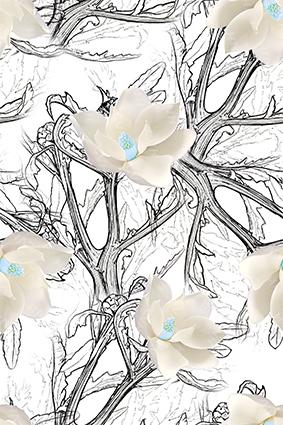 素描树枝洁白花朵