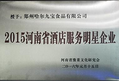 2015河南省酒店服务明星企业