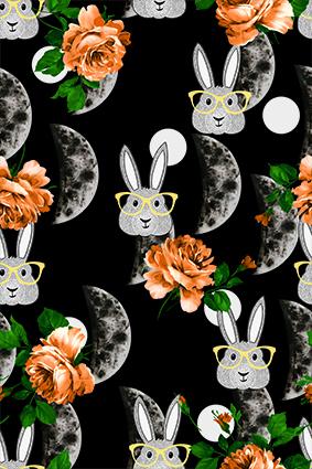半圆月球眼镜兔子