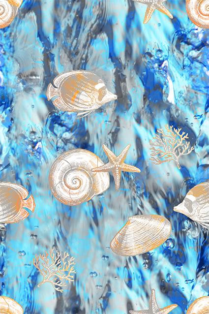 素描海螺花纹鱼图绘