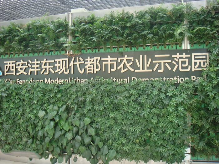 陕西西安沣东现代都市农业博览园