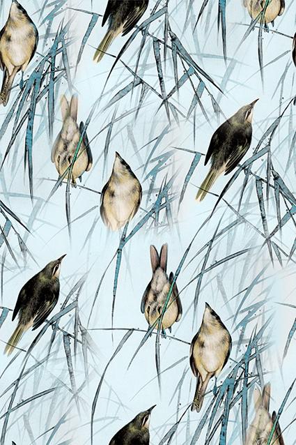 枯枝树叶小鸟图绘