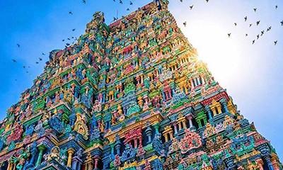 印度7日非凡体验之旅