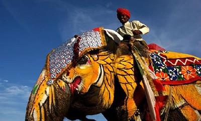 印度10日朝圣之旅