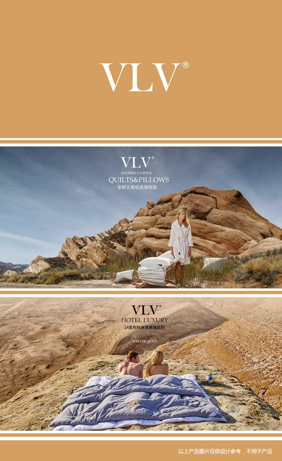 第24类-VLV