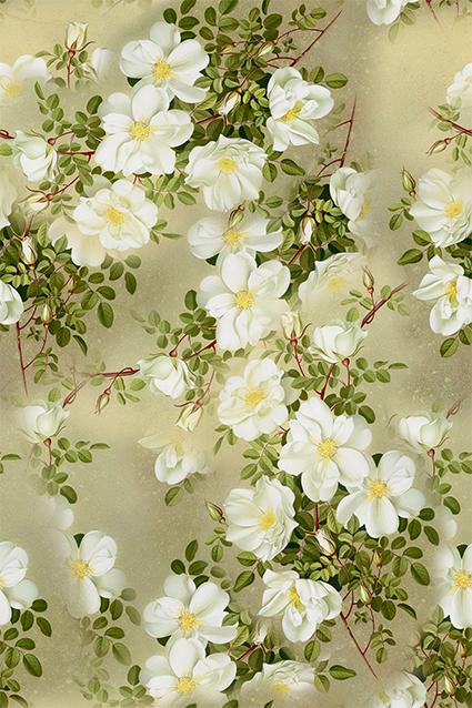 淡雅唯美植物花卉