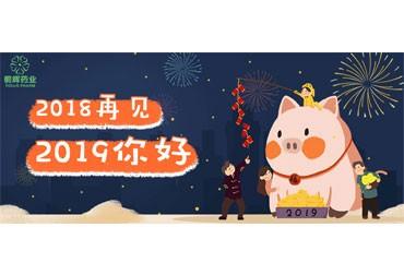 元旦快乐 | 2019年您好!