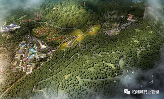 亚博体育官方在线签约上海水石投资 打造青田高品质文商旅新地标