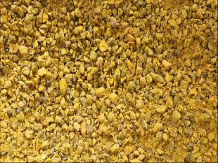 立轴粉碎机 姜黄