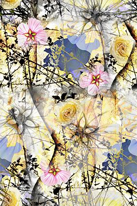 渲染效果植物花
