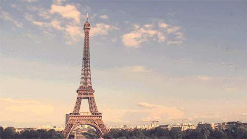 1比起法国文化,我更迷恋这些大自然的舞姬