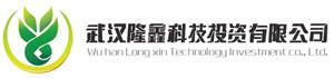 武汉隆鑫科技投资有限公司