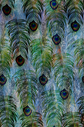 抽丝滤镜孔雀羽毛