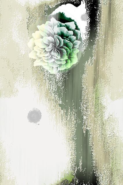 定位淡雅迷墙花朵
