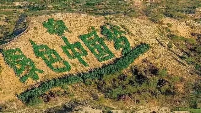 中国用40年时间,干掉一片沙漠,连NASA和联合国都被惊动!网友:不枉我每天凌晨偷能量!