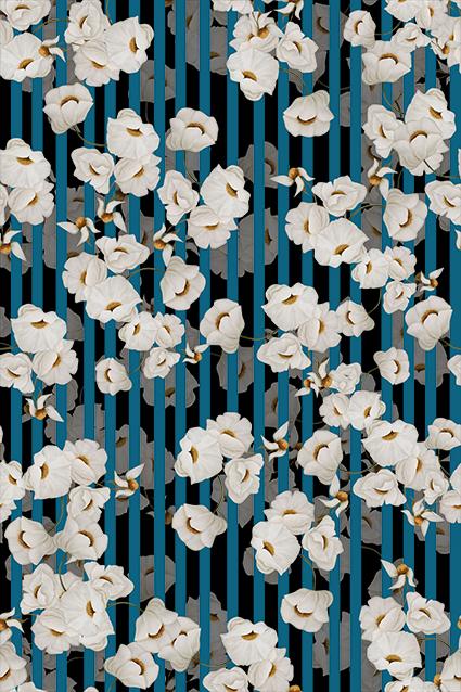 素描透视植物小花卉