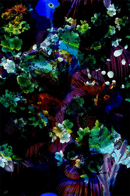 抽象植物树梢花叶
