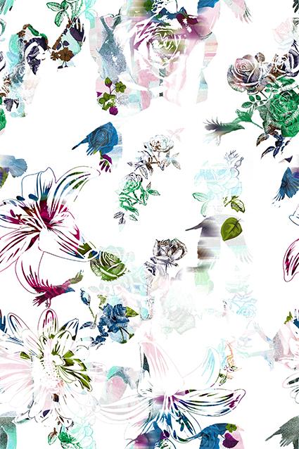 点缀装饰休闲花卉