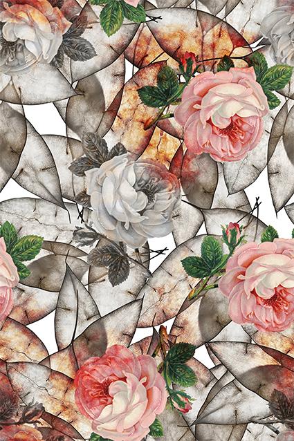 抽象植物叶片花琼