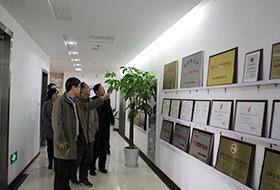 中国(南京)软件谷管委会领导一行莅临伟德国际手机登陆参观指导